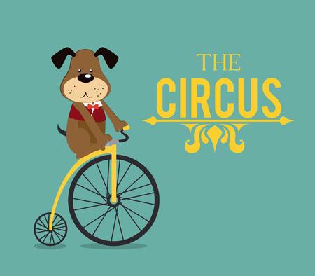 cirque: Circus design over blue background, vector illustration
