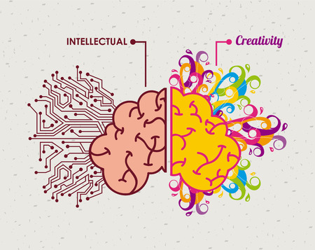 brain graphic design , vector illustration Vector