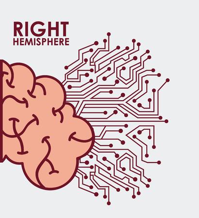 brain illustration: brain graphic design , vector illustration