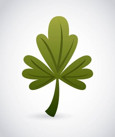 origanum: oregano graphic design , vector illustration Illustration