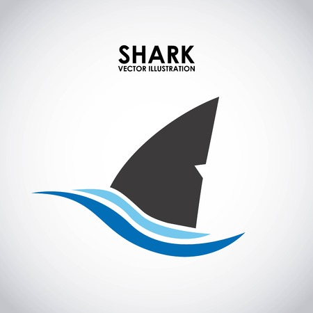 shark graphic design , vector illustration Illustration
