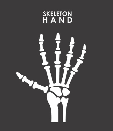 radiography: x rays graphic design , vector illustration