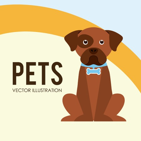 pets poster design, vector illustration eps10 graphic Vector