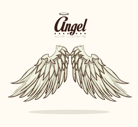 angel white: Angel design over white background, vector illustration. Illustration