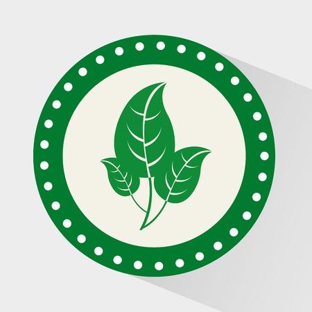 leafs: leafs icon design, vector illustration eps10 graphic Illustration