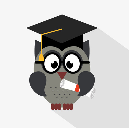 graduated: owl bird design, vector illustration eps10 graphic
