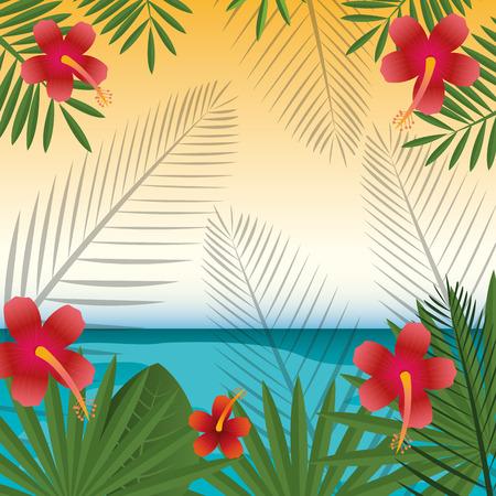 sunshine background: Flowers design over sunshine background, vector illustration. Illustration