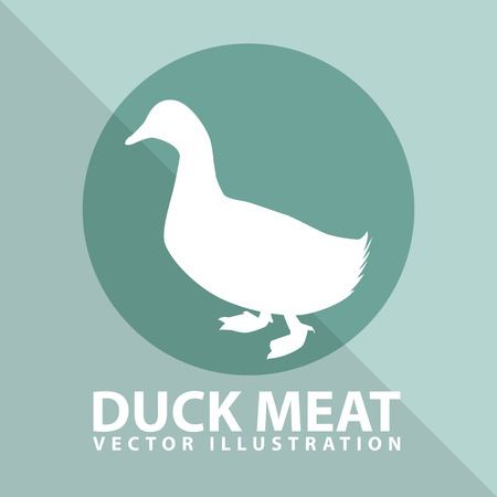 duck feet: duck meat design, vector illustration eps10 graphic Illustration