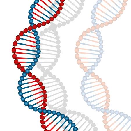 DNA design, vector illustration. Illusztráció