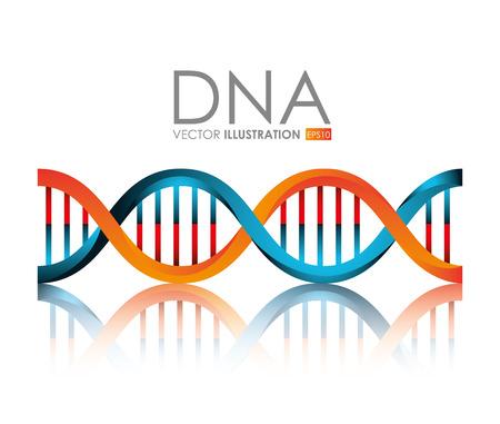 DNA design, vector illustration. 向量圖像