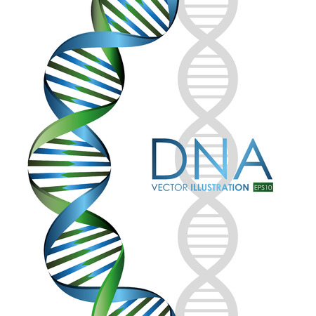 DNA design, vector illustration. Illustration