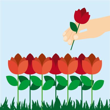 tuinontwerp: rozen tuin ontwerp, vectorillustratie eps10 grafische