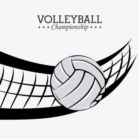 the net: Sport design over white background, vector illustration.
