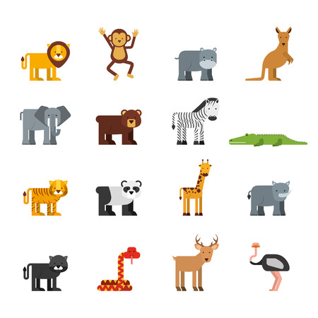kangaroo white: animal cute design, vector illustration eps10 graphic Illustration