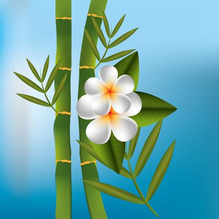 beauty therapist: Spa design over blue background, vector illustration.