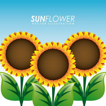 tuinontwerp: zonnebloem tuin ontwerp, vectorillustratie eps10 grafische Stock Illustratie