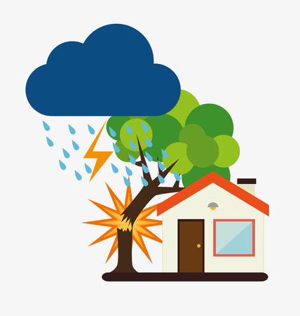 tree service business: Insurance design over white background, vector illustration.