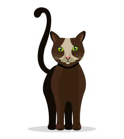 pussycat: Cat design over white background, vector illustration.