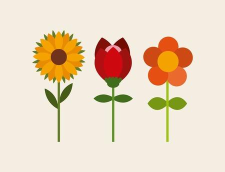 garden design: fiori disegno del giardino, illustrazione grafica vettoriale eps10