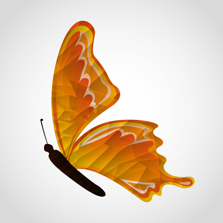 butterfly flying: butterfly flying design