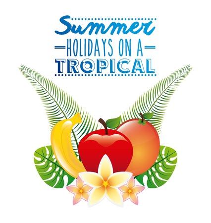 tropical fruit: tropical fruit  design, vector illustration graphic