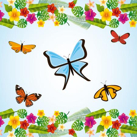 plant delicate: tropical flowers design, vector illustration eps10 graphic