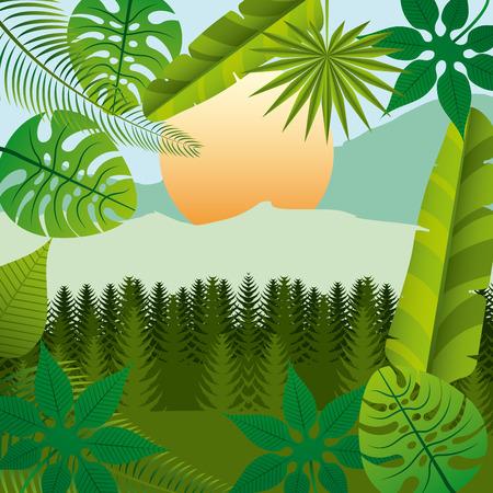 tropical flower: tropical flower design, vector illustration eps10 graphic