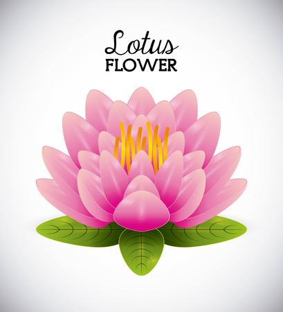 dibujos de flores: diseño de la flor de loto, ilustración vectorial gráfico Vectores