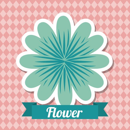 plant delicate: beautiful flower design, vector illustration   graphic