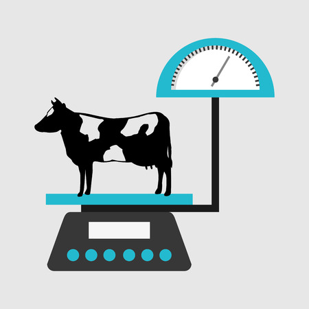dairy products: dairy products design, vector illustration eps10 graphic Illustration