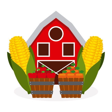 apples and oranges: fresh farm products design, vector illustration eps10 graphic