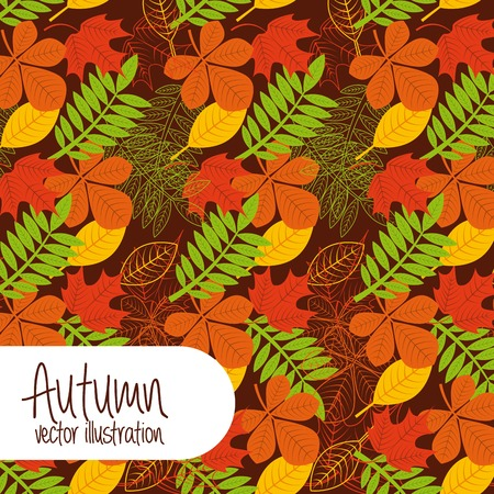 autum season design, vector illustration eps10 graphic