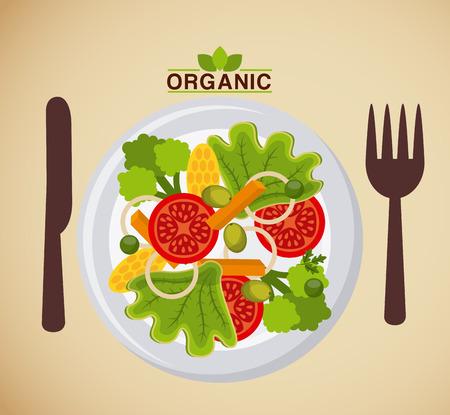 summer food: organic food menu design, vector illustration eps10 graphic