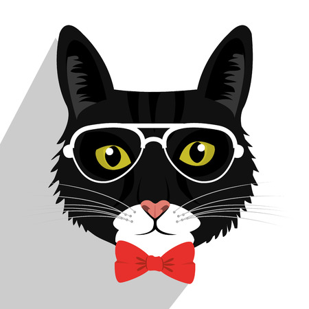 cat's eye glasses: Pet and animal icon design, vector eps10.