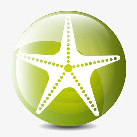 sea star: Summer, travel and vacations graphic design with icons, vector illustration