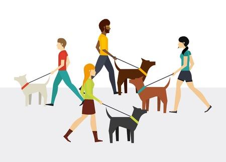 dog walker: people walking design, vector illustration eps10 graphic