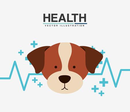 emergency medical: pet care design, vector illustration eps10 graphic