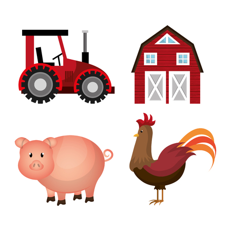 pig farm: Farm fresh graphic design, vector illustration eps10
