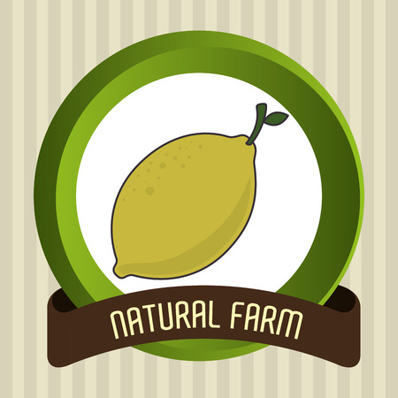 Natural food product grahic design, vector illustration eps10