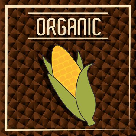 grahic: Natural food product grahic design, vector illustration