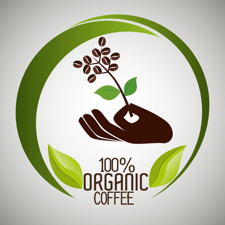 Delicious natural and organic coffee graphic design, vector illustration