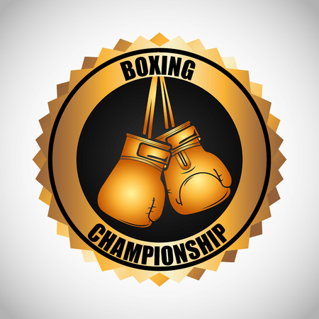 boxing championship design, vector illustration eps10 graphic