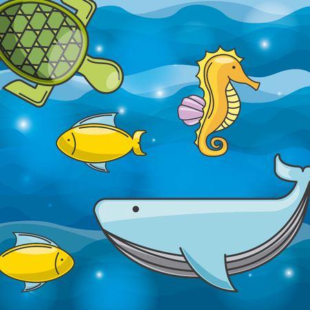 mamal: sea concept design, vector illustration eps10 graphic