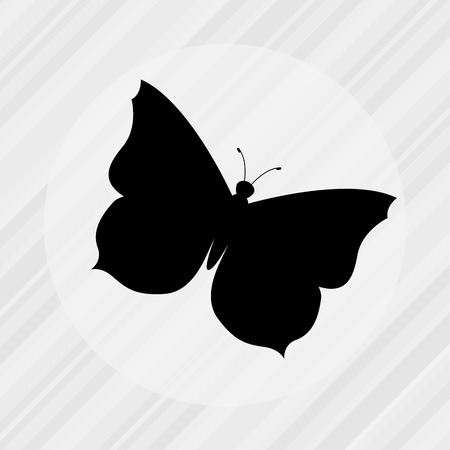 butterfly isolated: butterfly isolated design, vector illustration eps10 graphic Illustration