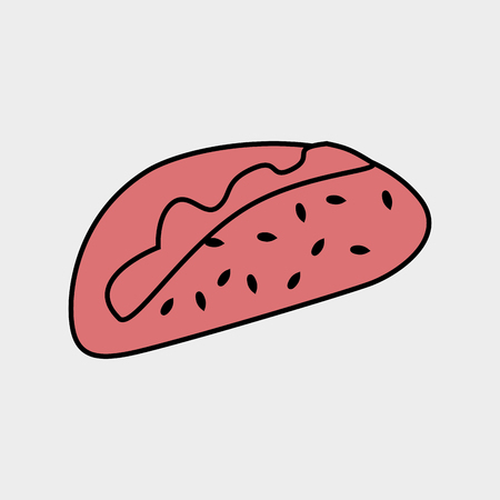 mexican food plate: fast food design, vector illustration eps10 graphic