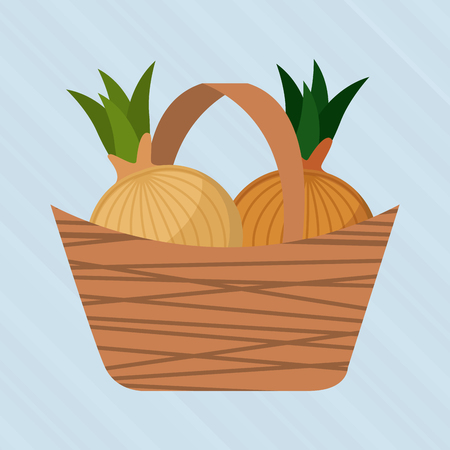produce product: healthy food design, vector illustration   graphic