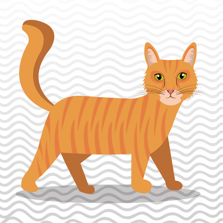cute cat design, vector illustration eps10 graphic