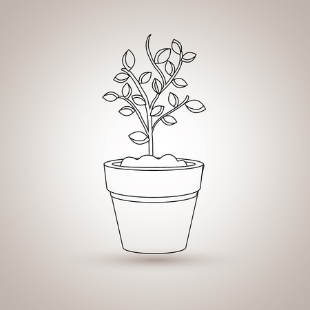 plant pot: plant pot design, vector illustration eps10 graphic