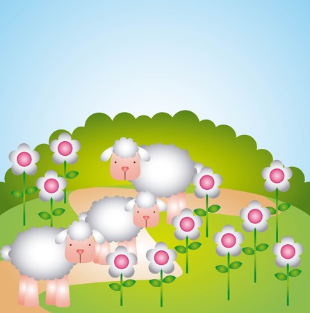 flock: flock of sheep design, vector illustration eps10 graphic