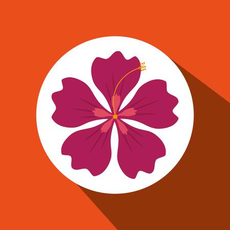 hawaiian flower: hawaiian flower design, vector illustration eps10 graphic